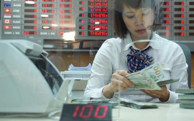 """Ngân hàng Nhà nước """"lên lịch hẹn"""" bán ngoại tệ"""
