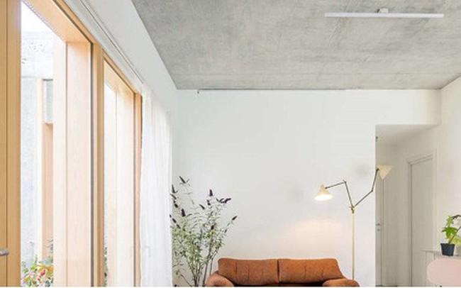 Ngôi nhà được xử lý để thông gió và đón nắng tốt - ảnh 1