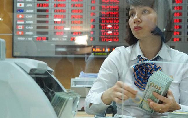 Liên tiếp rơi sâu, tỷ giá USD/VND khép lại một năm trong tầm kiểm soát