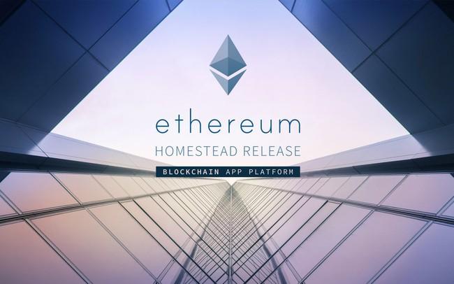 Ethereum lập đỉnh mới, Ripple bị đánh bật khỏi vị trí đồng tiền số lớn thứ 2 thế giới