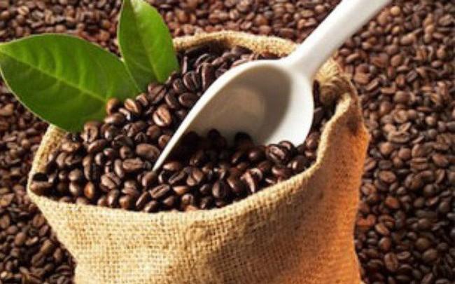Cà phê là mặt hàng xuất khẩu số 1 của Việt Nam sang thị trường Algeria