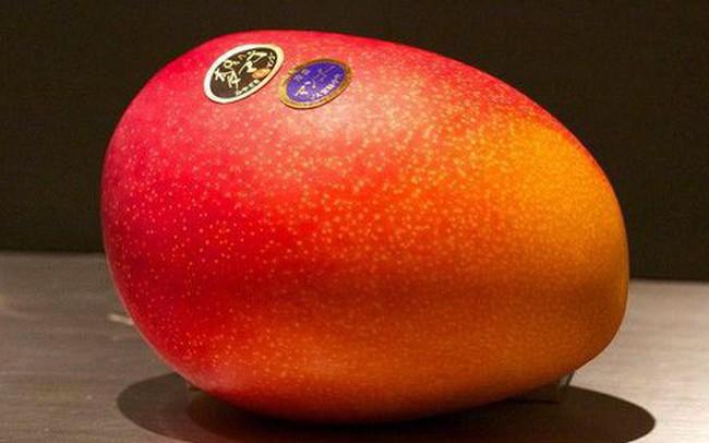 """Giờ đến trái cây cũng làm """"hàng hiệu"""", một quả xoài có giá hơn 6 triệu và có một nơi bán toàn hàng hiệu như vậy"""