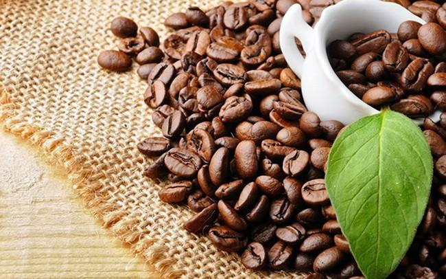 Xuất khẩu cà phê cán mốc 3,5 tỷ USD trong năm 2018