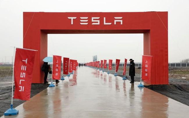 Elon Musk động thổ xây nhà máy xe điện tại Trung Quốc, tham vọng biến đầm lầy thành dây chuyền siêu hiện đại trong vài tháng