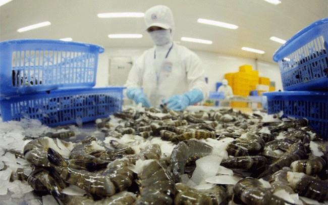 Xuất khẩu tôm sang Trung Quốc doanh nghiệp cần chú ý điều gì? - ảnh 1