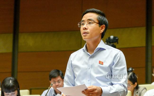 ĐBQH băn khoăn khi startup Việt đăng ký hoạt động ở nước ngoài - ảnh 1
