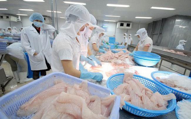 Xuất khẩu tôm, cá tra, bạch tuộc giảm trong 9 tháng đầu năm 2019 - ảnh 1