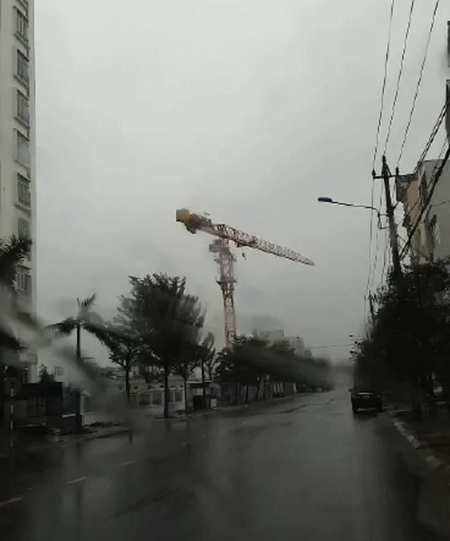 Cần trục xây dựng chung cư 32 tầng quay tít, người dân Quy Nhơn sợ hãi trước bão Nakri, Giám đốc Sở nói doanh nghiệp không đồng ý hạ cẩu