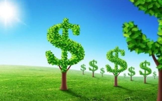 Lịch chốt quyền nhận cổ tức bằng tiền của 7 doanh nghiệp