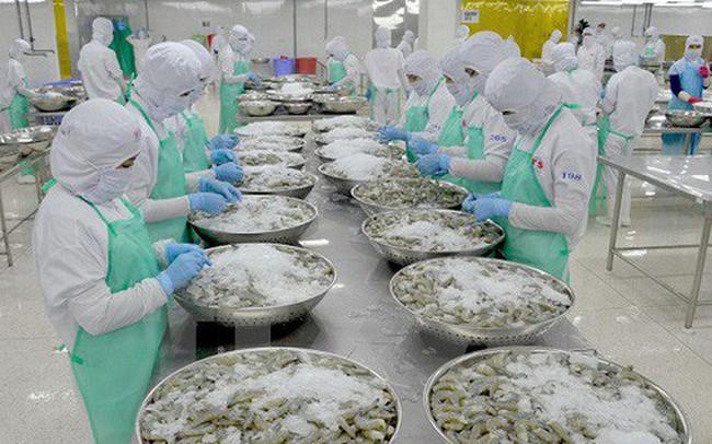 Ngành thủy sản hướng đến mục tiêu 9 tỷ USD, nỗ lực gỡ thẻ vàng trong năm 2019