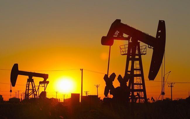 Thị trường ngày 16/3: Palađi lập đỉnh cao mới, giá dầu WTI lên cao nhất từ đầu năm - ảnh 1