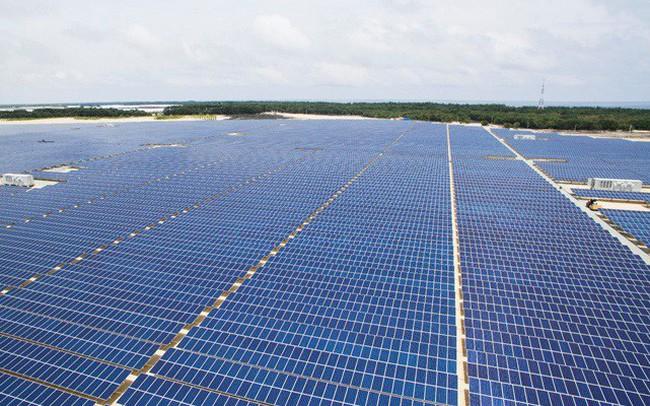 Đẩy mạnh điện mặt trời GEC ngược dòng thị trường, lợi nhuận gộp quý I 2019 tăng trưởng gần 50%