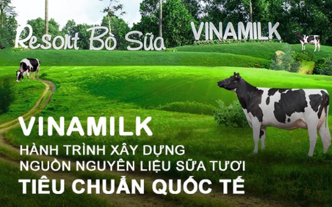 Vinamilk và hành trình xây dựng nguồn nguyên liệu sữa tươi theo tiêu chuẩn quốc tế