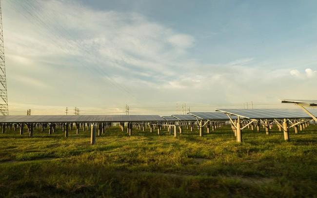 Nhà máy điện mặt trời Dầu Tiếng: Chọn đất bán ngập để phát triển năng lượng bền vững