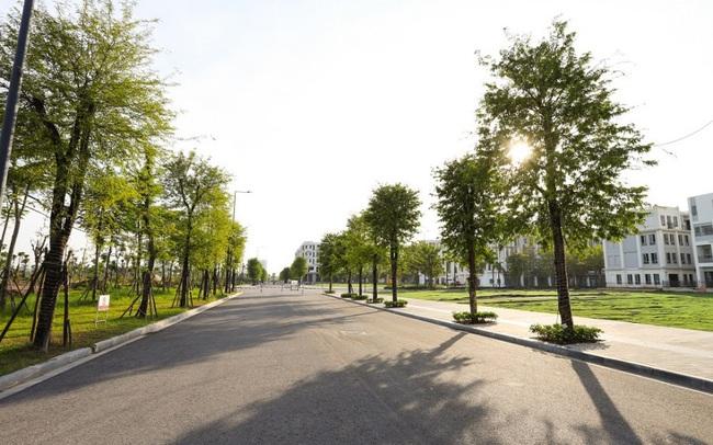 The Manor Central Park: tầm nhìn quy hoạch của tương lai