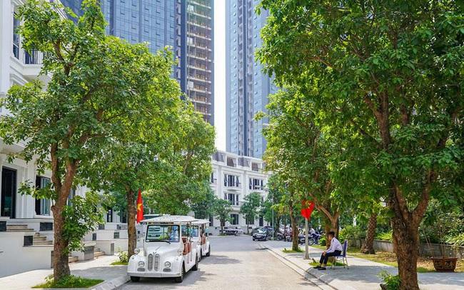 Làm sao để sống ở Hà Nội mà được hưởng không khí sạch?