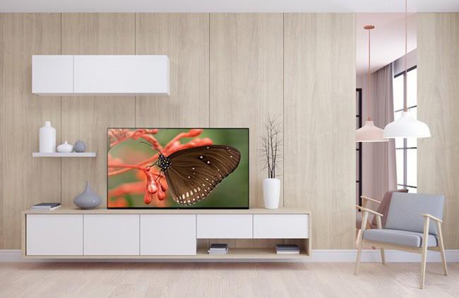 Điều gì làm bạn quyết định chọn mua Sony OLED TV? - ảnh 1