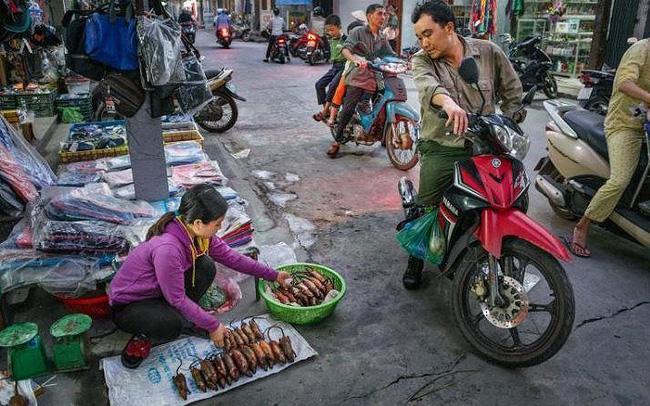Khi nhà báo Tây thử món chuột đồng Việt Nam