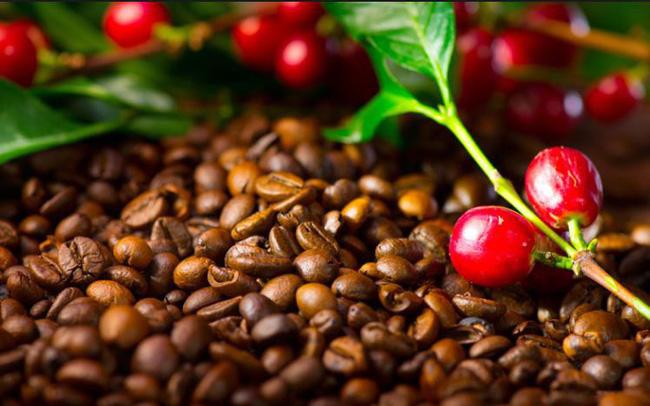 Thị trường ngày 12/4: Giá dầu và vàng giảm, thép tiếp tục tăng mạnh, cà phê thấp nhất 13 năm