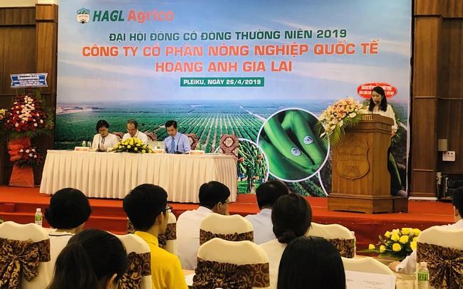 [Trực tiếp] ĐHĐCĐ HAGL Agrico: Bầu Đức khẳng định HAGL đến hiện tại không bị thu hồi đất ở Campuchia