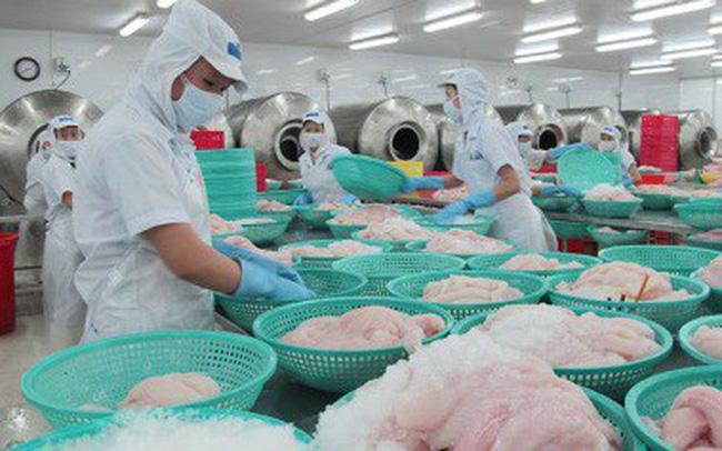 Xuất khẩu cá tra sang Anh tăng gần 70% trong tháng 3/2019