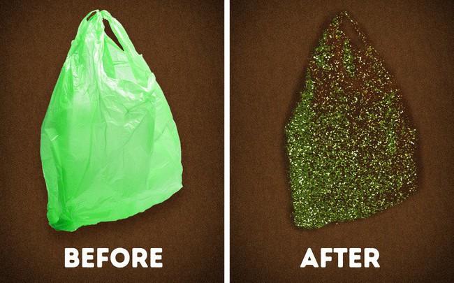 Theo nghiên cứu, loài giun ăn rác thải nhựa này có thể là vị cứu tinh cho trái đất trong tương lai