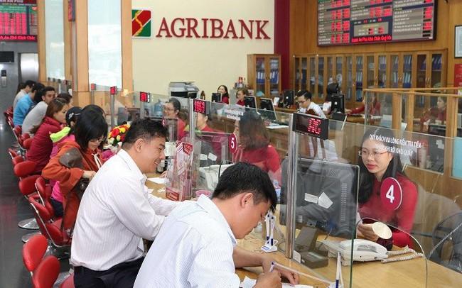 Nhiều áp lực tăng lãi suất, Ngân hàng Nhà nước ứng phó thế nào? - ảnh 1