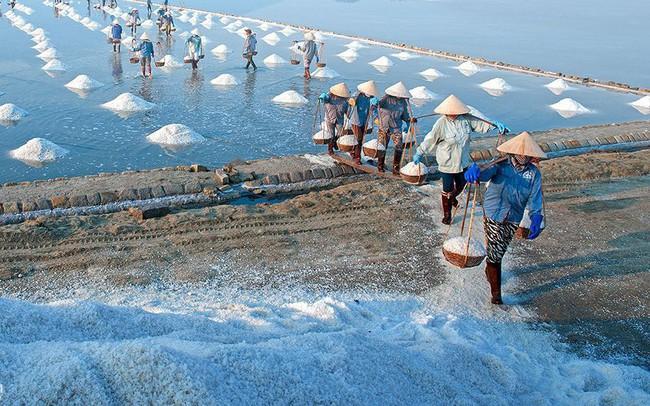 Ngành muối Việt khốn khổ vì hàng nhập khẩu và biến đổi khí hậu - ảnh 1