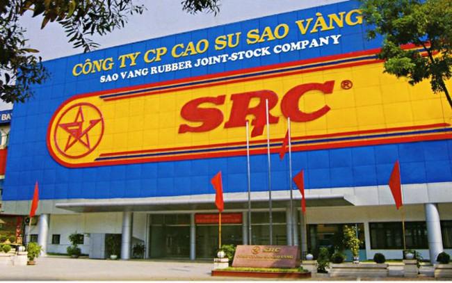 Cao Su Sao Vàng: Dự án đất vàng vẫn trên giấy, một cổ đông nắm 4,6% phản ánh có dấu hiệu bất thường trong bầu thành viên HĐQT