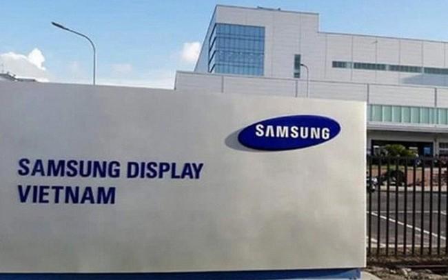Lợi nhuận tổ hợp Samsung Việt Nam giảm mạnh theo tập đoàn mẹ, Samsung Display lỗ hơn 1.000 tỷ đồng