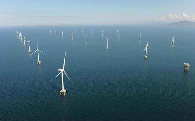 Siêu dự án điện gió trị giá 12 tỷ USD ở Bình Thuận đã được cấp giấy phép khảo sát