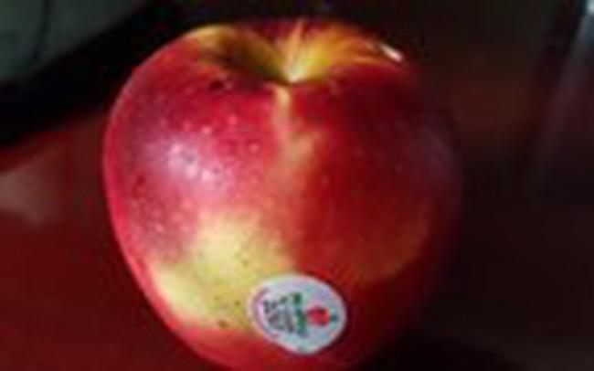 Vì sao táo ngoại để được lâu, khi rửa thẩy vỏ nhớt?