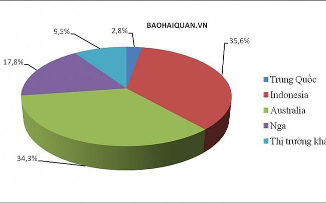 Than đá nhập khẩu tăng chóng mặt gần 12 triệu tấn