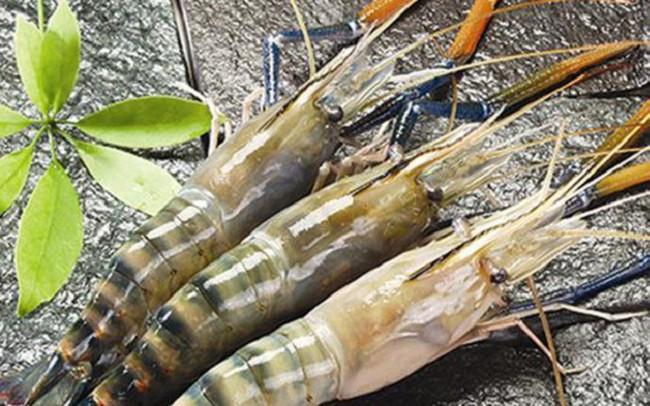 Thực phẩm Sao Ta (FMC): Quý 2 lãi 51 tỷ đồng tăng 90% so với cùng kỳ