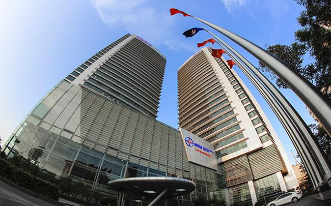 EVN đưa gần 19 triệu cổ phần EVN Finace ra bán đấu giá với giá cao hơn 80% thị giá - ảnh 1