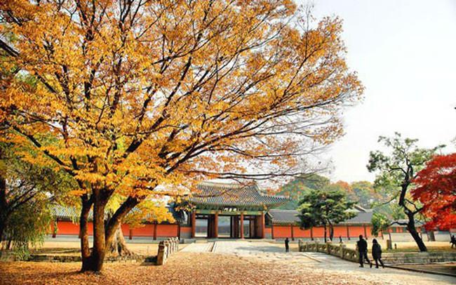"""Du lịch Hàn Quốc mùa hè này: Những lời khuyên """"nhỏ nhưng có võ"""" bạn cần dắt túi để có chuyến đi ý nghĩa nhất!"""