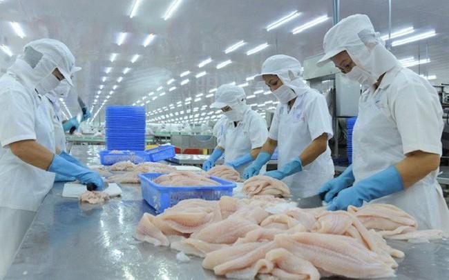 EVFTA cơ hội lớn và cũng đầy chông gai cho cá ngừ Việt Nam