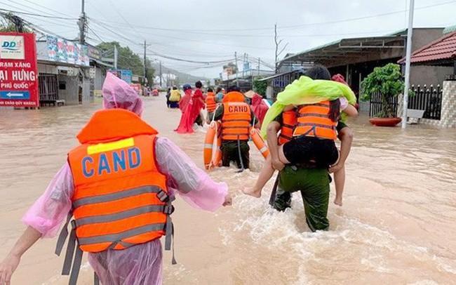 Từ 1.500 hành khách bị delay nghĩ về hậu họa phá rừng Phú Quốc