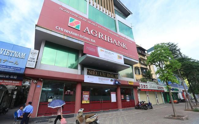 Chuẩn bị cổ phần hoá, Agribank khoe lãi tới 8.200 tỷ trong 7 tháng đầu năm 2019
