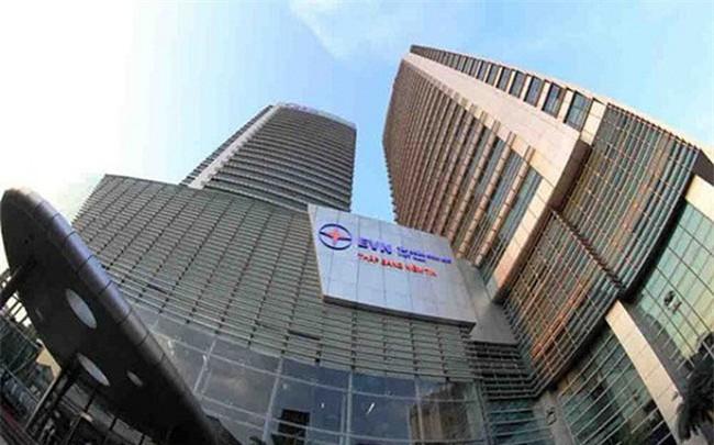 2 nhà đầu tư cá nhân đặt mua 16,25 triệu cổ phần EVN Finance mà EVN bán đấu giá - ảnh 1