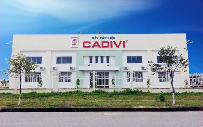 Lãi 242 tỷ đồng nửa đầu năm, Cadivi (CAV) chuẩn bị chi trả cổ tức bằng tiền mặt tỷ lệ 25%