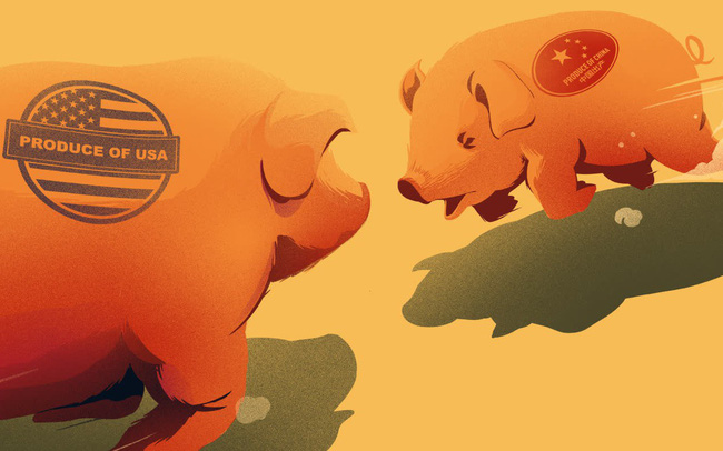 Cuộc chiến thịt lợn và thịt bò: Nông sản đã mang lại lợi thế cho Trung Quốc như thế nào trong chiến tranh thương mại với Mỹ?