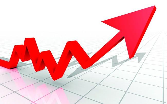 PXL tăng 71% từ đầu năm, Giám đốc PVC Idico tiếp tục mang 3 triệu cổ phiếu ra chào bán - ảnh 1