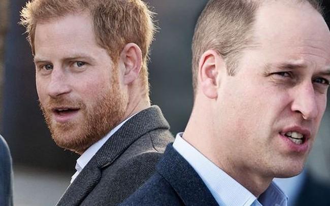 Hoàng tử Harry liên tục gây thất vọng với người hâm mộ khi bị tố là kẻ đạo đức giả và đá xoáy anh trai William