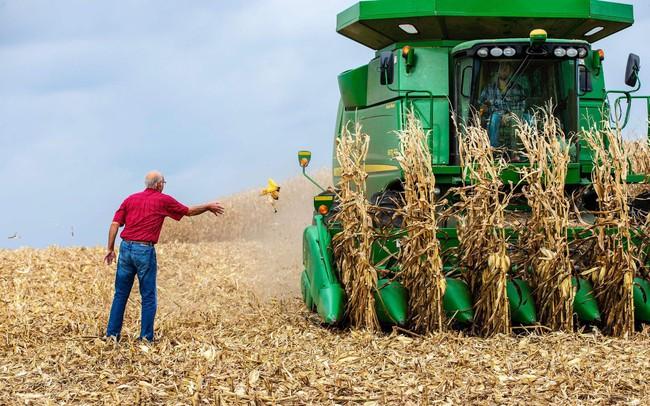 Trung Quốc xác nhận ngừng mua nông sản Mỹ, cuộc chiến thương mại ngày càng trầm trọng