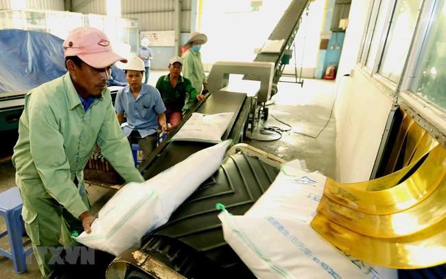 Xuất khẩu gạo Việt Nam trong tháng Bảy đạt trên 4 triệu tấn