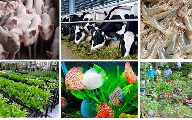 TP.HCM công bố phát triển 6 sản phẩm nông nghiệp chủ lực