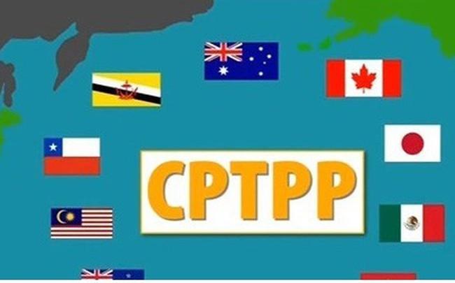 CPTPP: Từ góc nhìn an ninh-quốc phòng