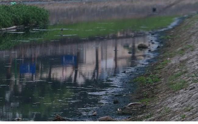 Giải pháp bio-nano của Nhật để làm sạch sông Tô Lịch chỉ là tạm thời