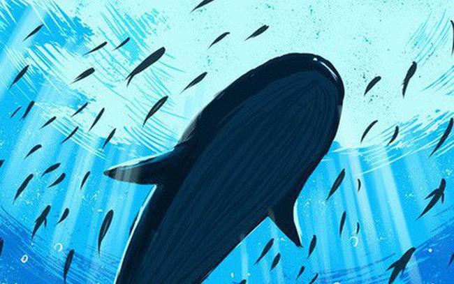 """Hướng nội hay hướng ngoại không phải vấn đề, quan trọng là bạn có hiểu bản thân không: Hãy là một con cá mạnh nhất chứ đừng thoi thóp """"chạy đua"""" trên cạn với động vật 4 chân"""